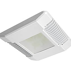 Cree CPY LED
